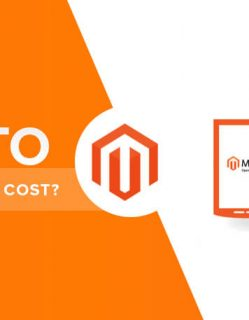 Cost of a Magento website