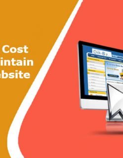 Cost to Develop eCommerce Website