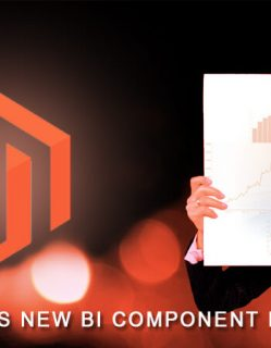 Magento BI launched