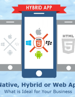 Native, Hybrid or Web App