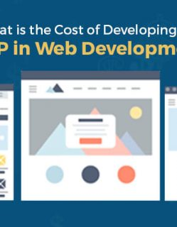 Cost of Develop an MVP in Web Development
