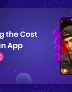 Cost Factors of an App Like Tik Tok